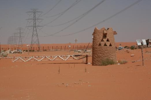 Camel Camp 039