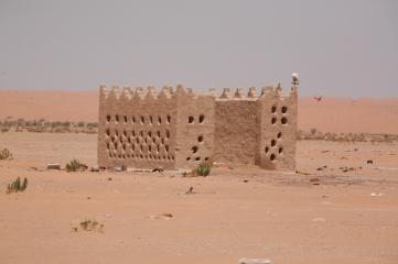 Camel Camp 050