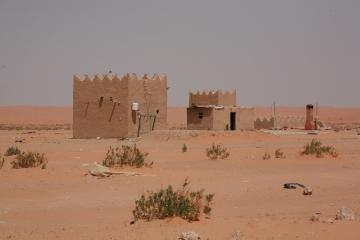 Camel Camp 051