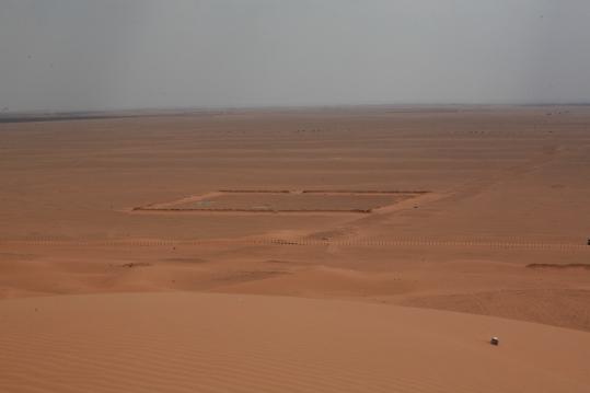 Camel Camp 078