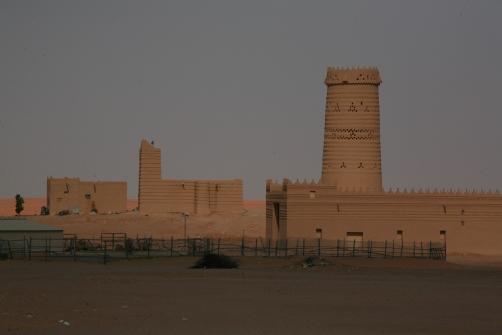 Camel Camp 115