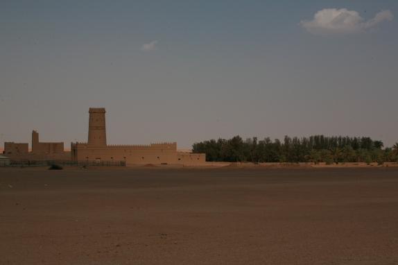 Camel Camp 117