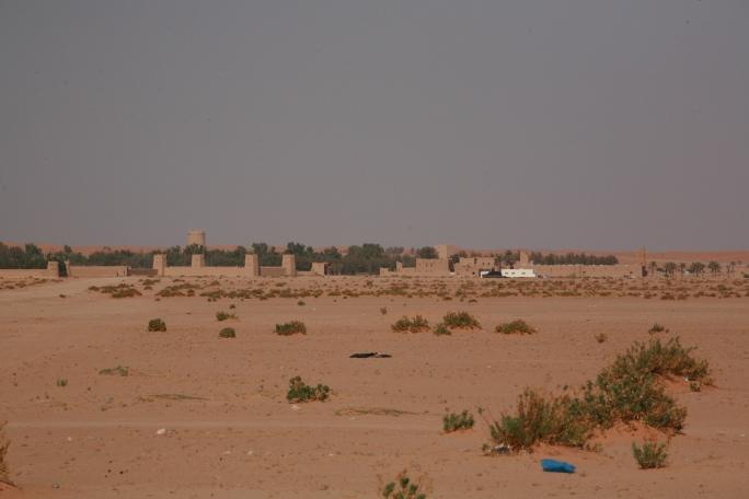Camel Camp 129