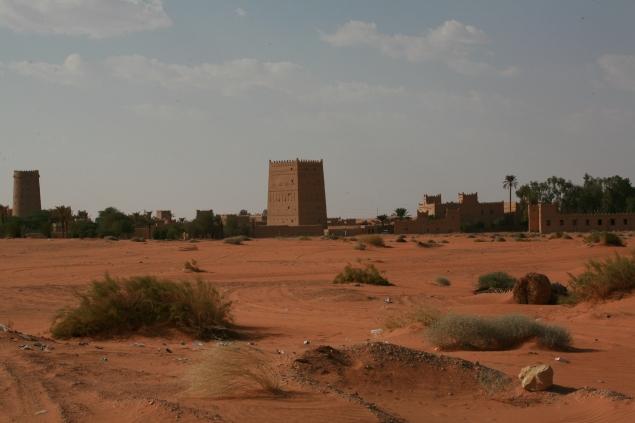 Camel Camp 138