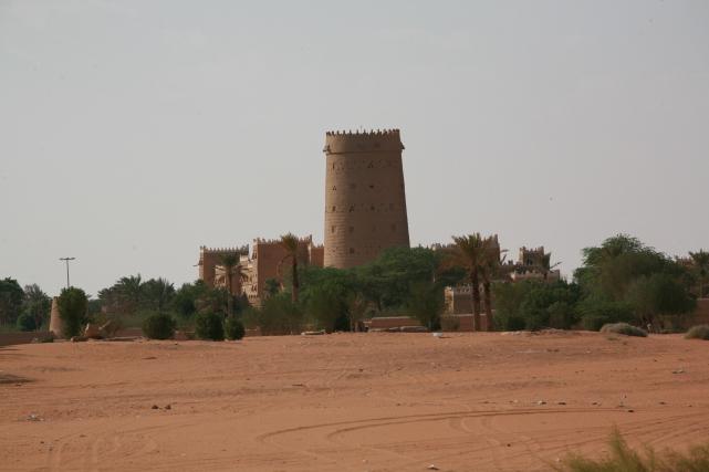 Camel Camp 142